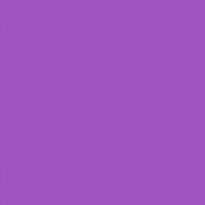 colore-viola-resized[1]